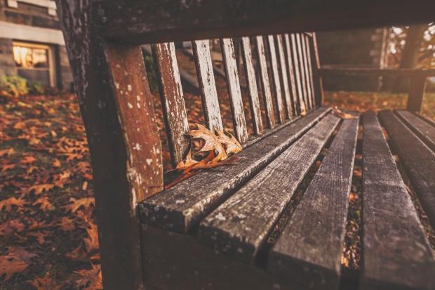 Foto: Ryan McGuire / gratisography.com