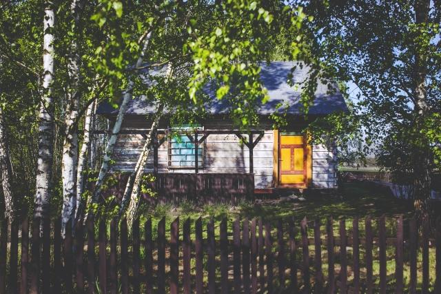 Zdjęcie: Kaboompics.com