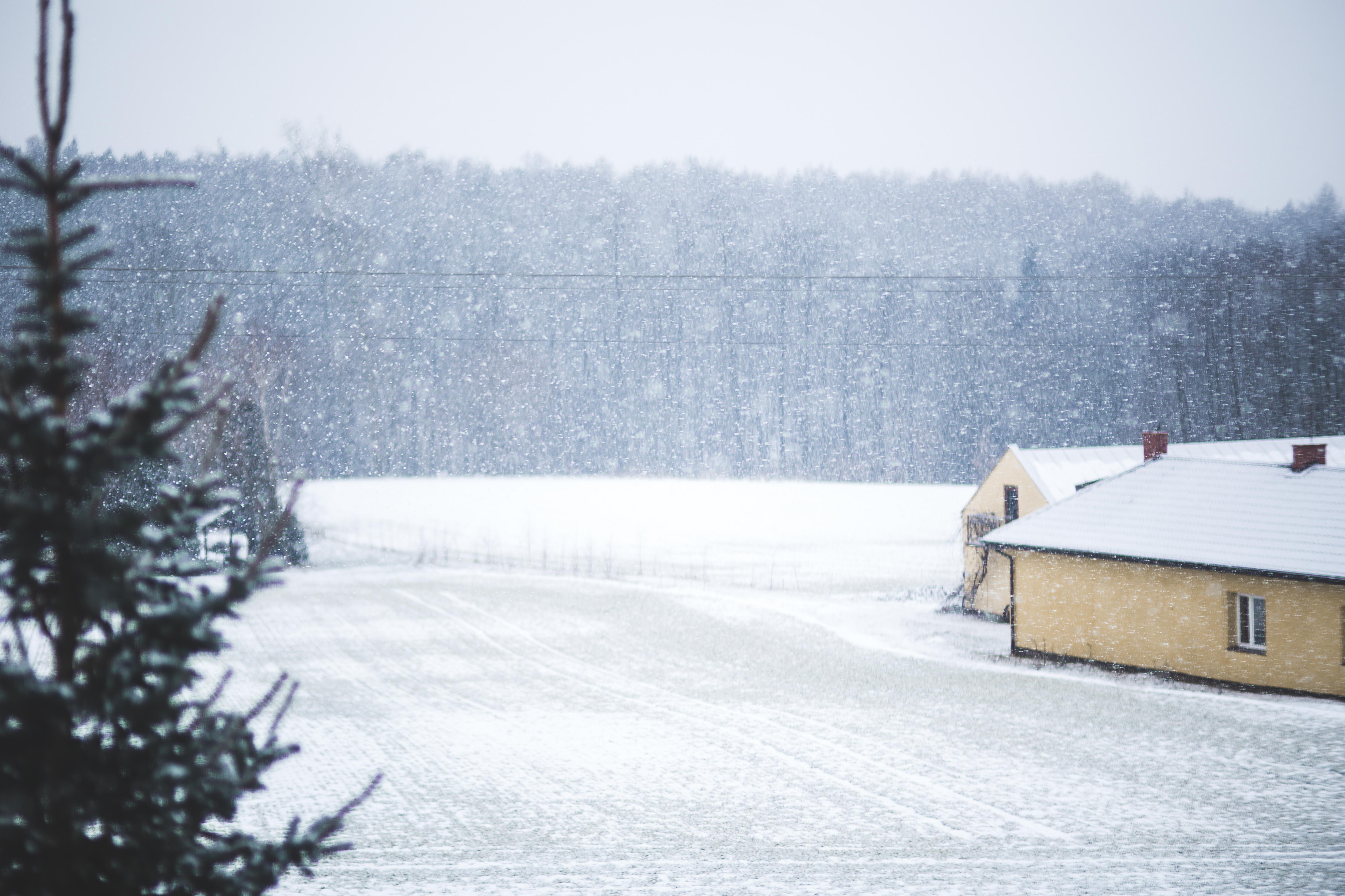 kaboompics.com_Winter